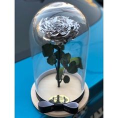Gorgeous dome with silver rose . Delivery worldwide! Contact us: contact@buchetino.com .  The rose is eternal and we guarantee that the rose will last for at least 3 years.