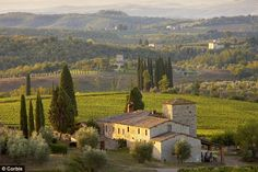 vineyards in italy | Wine tasting holidays, Italy: Chianti, the scenic Tuscan escape that's ...
