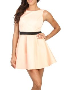 Bought this Mesh Back Skater Dress from ArdenB