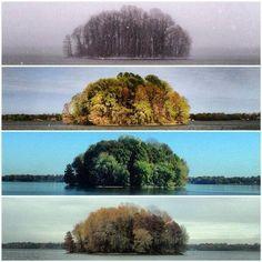 Cuatro estaciones en una imagen ~ Lago Springfield, Illinois  Paisajes Increíbles (@_Paisajes_) | Twitter