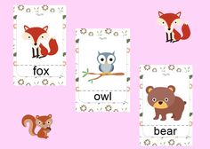 Forest animals pack