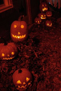 Imagen de autumn, Halloween, and fall