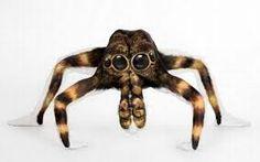 spider....man
