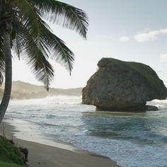 Stunning Bathsheba on the East Coast of Barbados Caribbean Vacations, Caribbean Cruise, Le Grand Bleu, Windward Islands, Moving To The Uk, Bridgetown, Ocean Sounds, Little Island, Vacation Spots