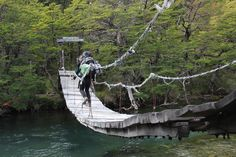Image result for patagonia Outdoor Furniture, Outdoor Decor, Patagonia, Hammock, Image, Hammocks, Hammock Bed, Backyard Furniture, Lawn Furniture