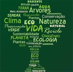 #amazon #amazonia #biodiversidade #caatinga #cerrado #forest #floresta #meioambiente #natural #natureza #projetoreflorestar #reflorestamento #sustentabilidade by projeto.reflorestar http://ift.tt/1U3LQqC