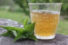 Tangy and mineral rich, this wild harvested and fermented nettle beer recipe is a delicious drink, reminiscent of hard cider, and easy to make at home!