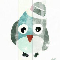 owl bird búho
