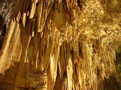 EEUU 20 Parque Nacional de las Cuevas de Carlsbad  En este parque de paisaje cárstico situado en el Estado de Nuevo México, se han descubierto hasta hoy 81 grutas excepcionales por sus dimensiones y por la abundancia, diversidad y belleza de sus formaciones minerales. Destaca la gruta de Lechuguilla, auténtico laboratorio subterráneo en el que se pueden estudiar los procesos geológicos y biológicos en un medio prácticamente intacto.