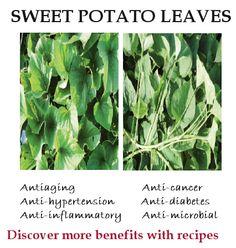 Sweet potato leaves- nutrition, benefits, recipes