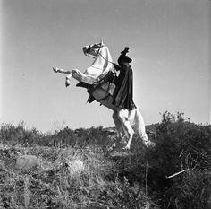 Zorro (1957)   Photos with Guy Williams   Note the White Stallion