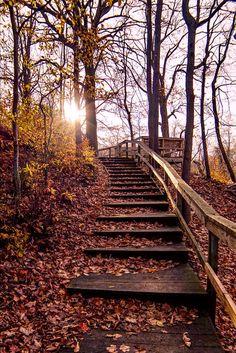 Magic Steps is a photograph by Zachery Mazzochetti. Source fineartamerica.com