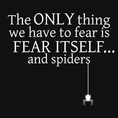 The Only Thing We Have To Fear Is Fear Itself, And Spiders