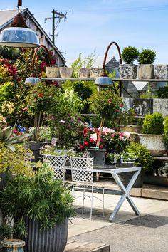 #garden #terrain