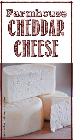 Farmhouse Cheddar Cheese ages in a fraction of the time of other recipes which means you'll be making grilled cheese sandwiches with your own homemade cheese in days! Goat Milk Recipes, No Dairy Recipes, Real Food Recipes, Cooking Recipes, Yummy Food, Fromage Vegan, Fromage Cheese, Cheddar Cheese Recipes, Healthy Recipes