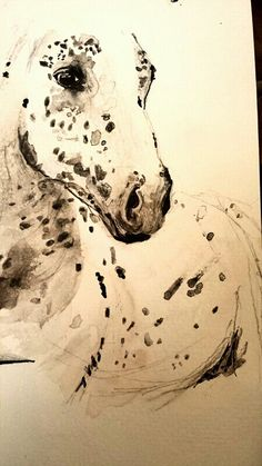 Horse watercolor artwork