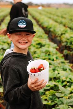 6 Stops on a Pacific Coast Highway Road Trip from Oceanside to San Diego | Carlsbad Strawberry Fields #simplywander #california #pacificcoasthighway #carlsbadstrawberryfields
