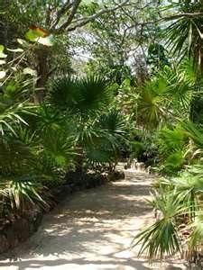 Chankanaab National Park in Cozumel, Mexico