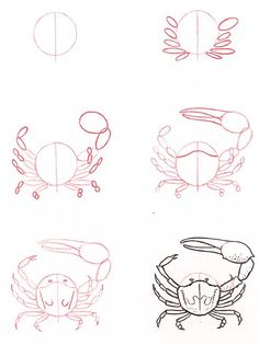 How to draw a crab: basic animal drawings j'apprends à dessine . - How to draw a crab: basic animal drawings j'apprends à dessine … – How to dr… - Drawing Lessons, Drawing Techniques, Art Lessons, Documents D'art, Art Du Croquis, Drawn Fish, Art Handouts, Step By Step Drawing, Drawing For Kids