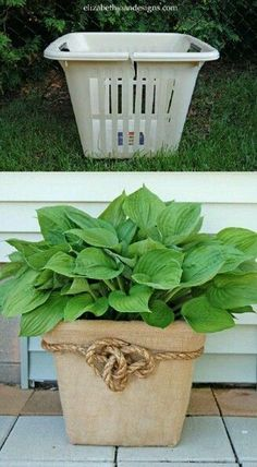 Who knew.....Burlap,Rope, and cheap plastic laundry basket = beautiful pot cover #cheap_garden_pots