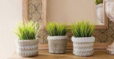 12натуральных альтернатив горшкам для комнатных растений