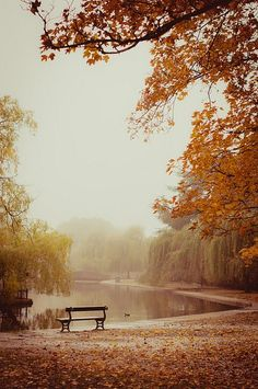 Silence by MMortAH on Flickr.