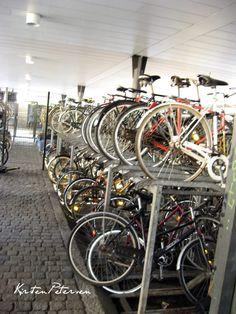 Cycle parking at Nørreport Station, Copenhagen by Kirsten Majbritt Petersen