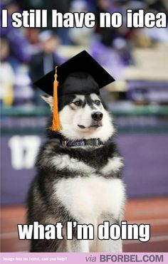 I imagine my college graduation to look something like this.