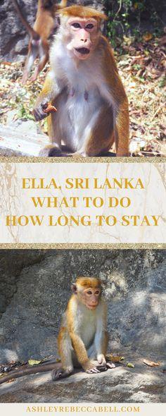 Ella Sri Lanka: The Ultimate Travel Guide - Ashley Rebecca Ella Sri Lanka, Adam's Peak, British People, One More Day, Beautiful Sites, Ultimate Travel, Train Travel, Travel Couple, Asia Travel