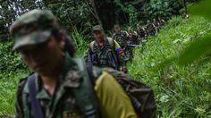 Arranca último proceso de reubicación de FARC