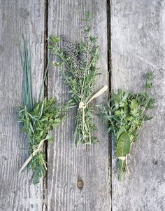herb-bouquet-herbal-bridal-boutonniere-buttonhole-rosemary-sage