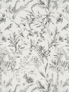 Ralph Lauren Wallpaper | Discount Wallpaper Superstore