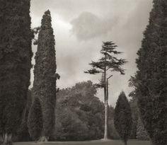 beth-dow-garden « Landscape Architecture Works | Landezine