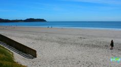 Take a closer look around Auckland with this collection of unique local photographs. Use our image galleries to inspire and help you plan your next Auckland trip. New Zealand Beach, Waiheke Island, Us Images, Auckland, Beaches, Gallery, Water, Outdoor, Gripe Water