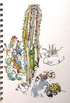 Saguaro and Prickly Pear, Sahuarita, Arizona.   Flickr - Photo Sharing!