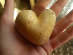 my patato heart!
