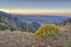 500px / bighorn mountains by bob perkins