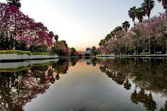 Parque da Redenção - Porto Alegre