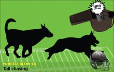 If cats and dogs refereed the Super Bowl: We won't even mention the inappropriateness that occurs when they catch their tails. —#veterinary dvm360