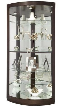 Corner Curio Cabinet With Light   At Any Time You Want To Earn A  Significant Purchase If You Are Self Indulgent    By Choi