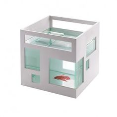 Umbra FishHotel Aquarium Always wanted to get another fish. Not an aquarium with expensive ones. Just something simple, one fish. Aquarium Design, Glass Fish Bowl, Glass Bowls, Cool Fish, Deco Design, Do It Yourself Home, Dot And Bo, Betta Fish, Fish Fish
