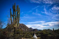 #bride #groom #wedding #photography #desert #Arizona #FourSeasonsScottsdale #stylisheventbylisa #benandkellyphotography