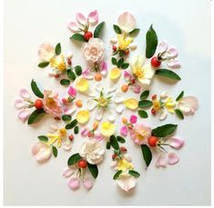Note Cards by Flora Forager available at Angel Face Botanicals