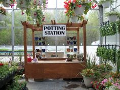 We will plant up your container for you or help you design yours!