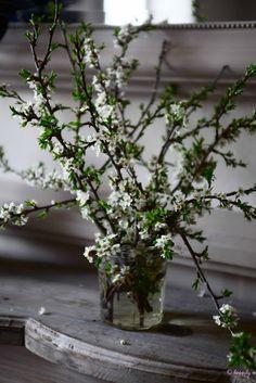 Wedding Ideas: flowering-branch-centerpiece