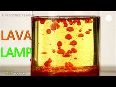 Home Made Lava Lamp : Science Experiment for Kids with Oil and Water