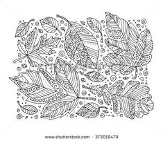 Forest leaves pattern, maple, oak, linden. Vector. Hand drawn artwork. Set collection. Bohemia concept for invitation card, ticket, branding, logo, label. Coloring book page for adult. Black, white