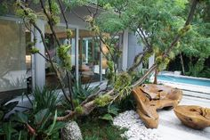 Raymond Jungles - private outdoor spaces
