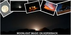 Moonlight Horse Trails at Horse About Trails Horse Trails, Moonlight, Attraction, Horses, Explore, Film, Movie, Films, Film Stock