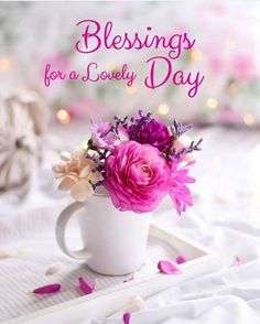 Good Morning Tuesday, Good Morning Msg, Special Good Morning, Good Morning Texts, Happy Morning, Good Morning Picture, Good Morning Messages, Morning Pictures, Good Morning Images